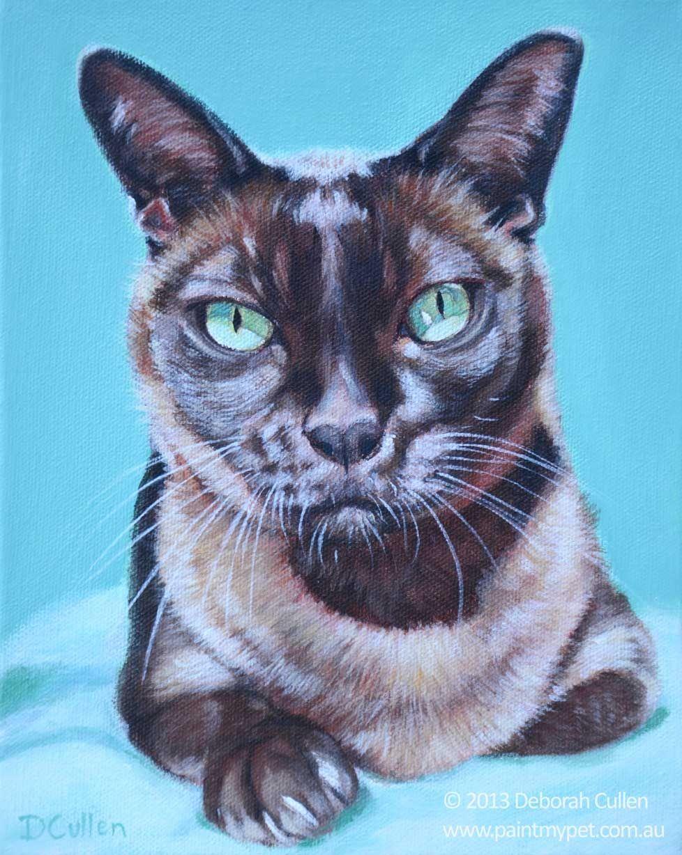 Milo Burmese Cat Portrait Paintmypet Pet Portraits