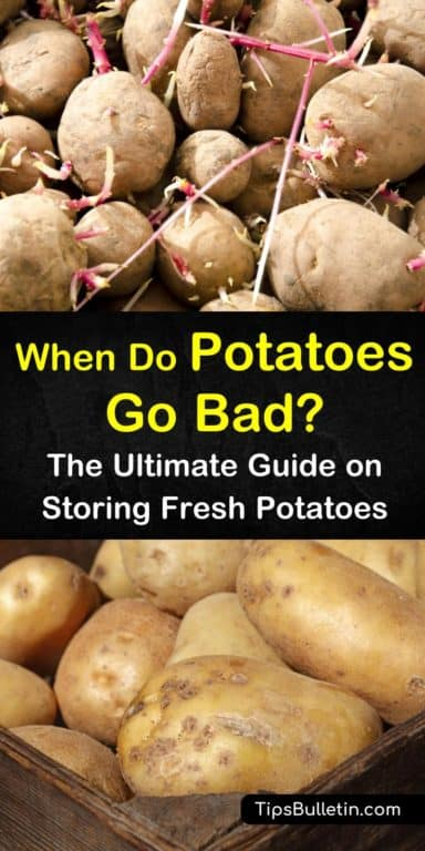 5 Ways To Tell If Potatoes Are Spoiled Potatoes How To Store Potatoes Food Store