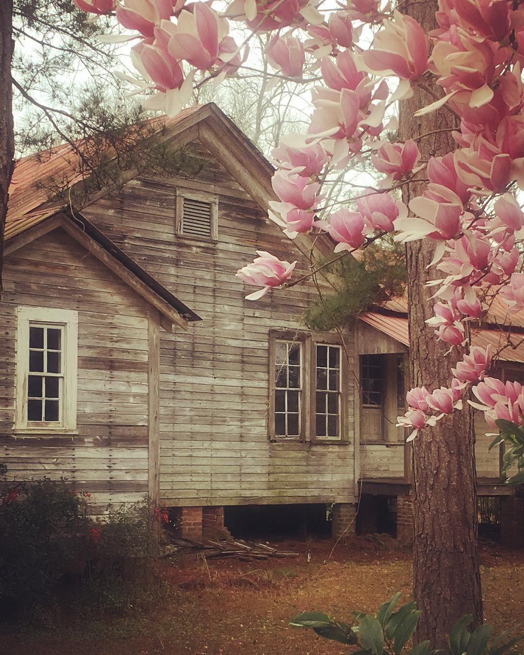 Old Farmhouse Japanese Flowers
