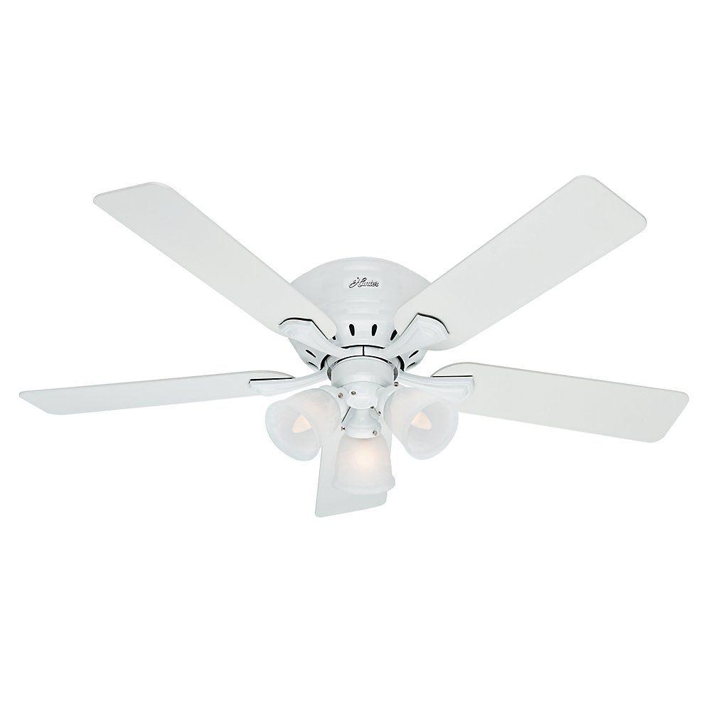 Hunter reinert ceiling fan with light