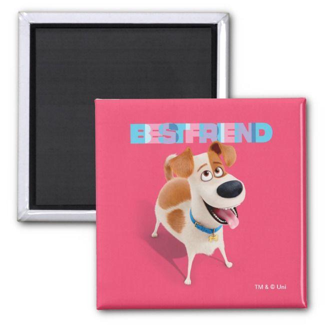 Secret Life of Pets  Max Best Friend Magnet