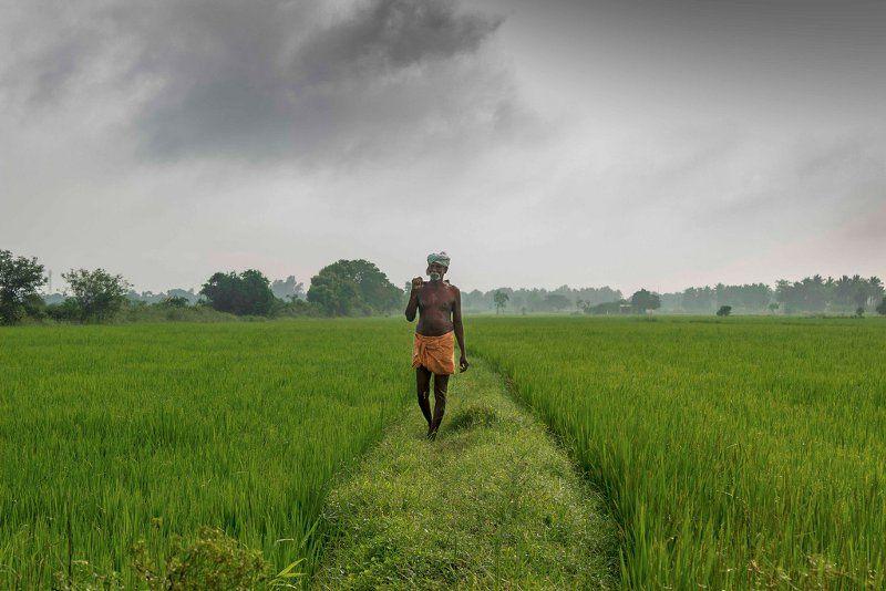Village images tamilnadu