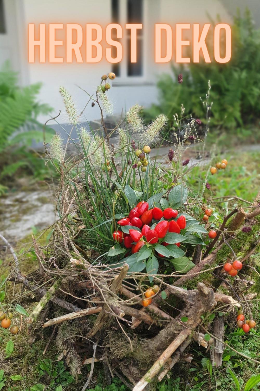 Gartendeko Basteln Naturmaterialien 35 Beispiele Wie Sie Den Garten Aufpeppen Topfpflanzen Kleinen Raumgartnerei Pflanzen