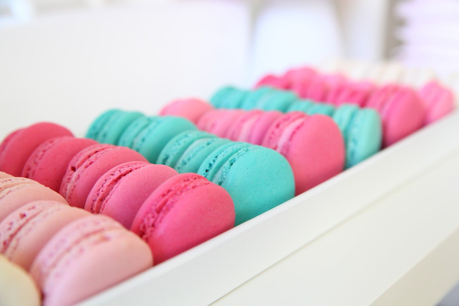 Image result for pink and teal