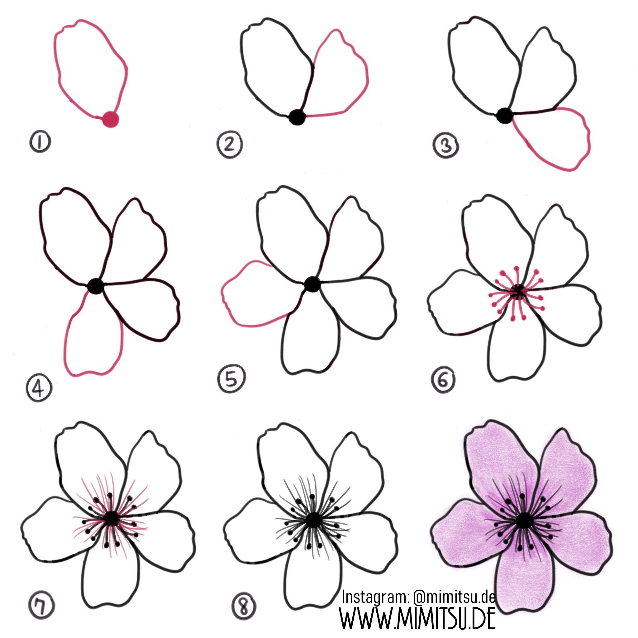 Diy How To Draw Flower Cherry Blossom Anleitung Kirschblute Blumenmalen Blumen Zeichnen Pflanzenzeichnung Blumenzeichnung