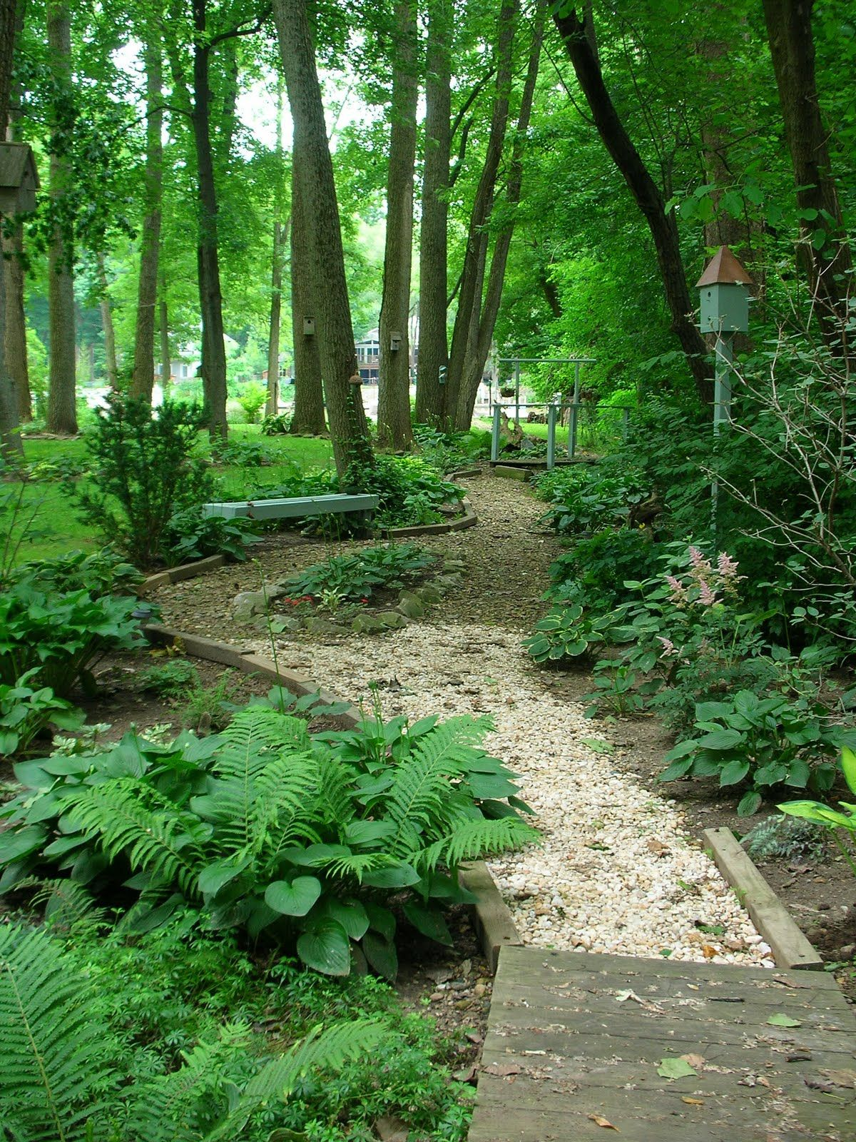 A Healthy Start How To Grow An Organic Garden Be Sure To Check Out This Helpful Article Landscaping Woodland Garden Wooded Landscaping Shade Garden
