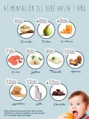 Comida Para Bebes 6 Y Mas Bebes De Julio 2015 Comida