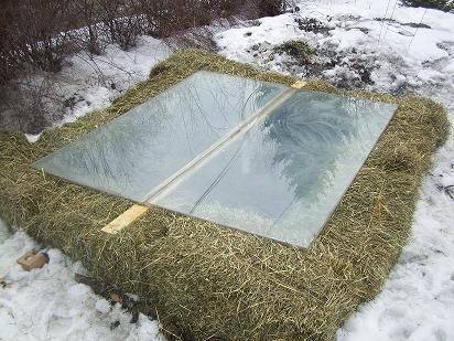 17 best 1000 images about Cold frame on Pinterest Gardens Seasons