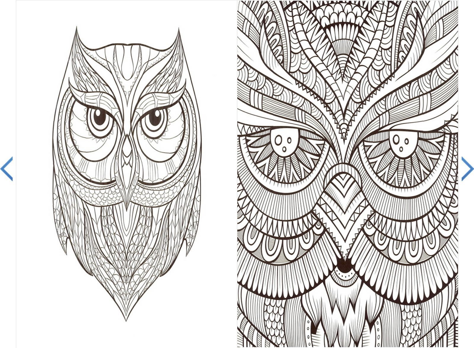 Owl Forest Coloring Book For Adult Anti Stress Art Therapy Noree Salaam Dovile