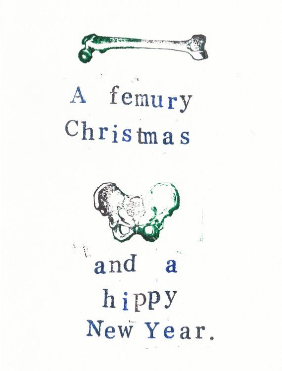 A Femury Christmas And Hippy New Year Card Funny Anatomy Science