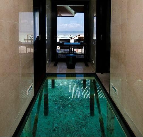Best 25 glass floor ideas on pinterest house near water for Architecture originale maison