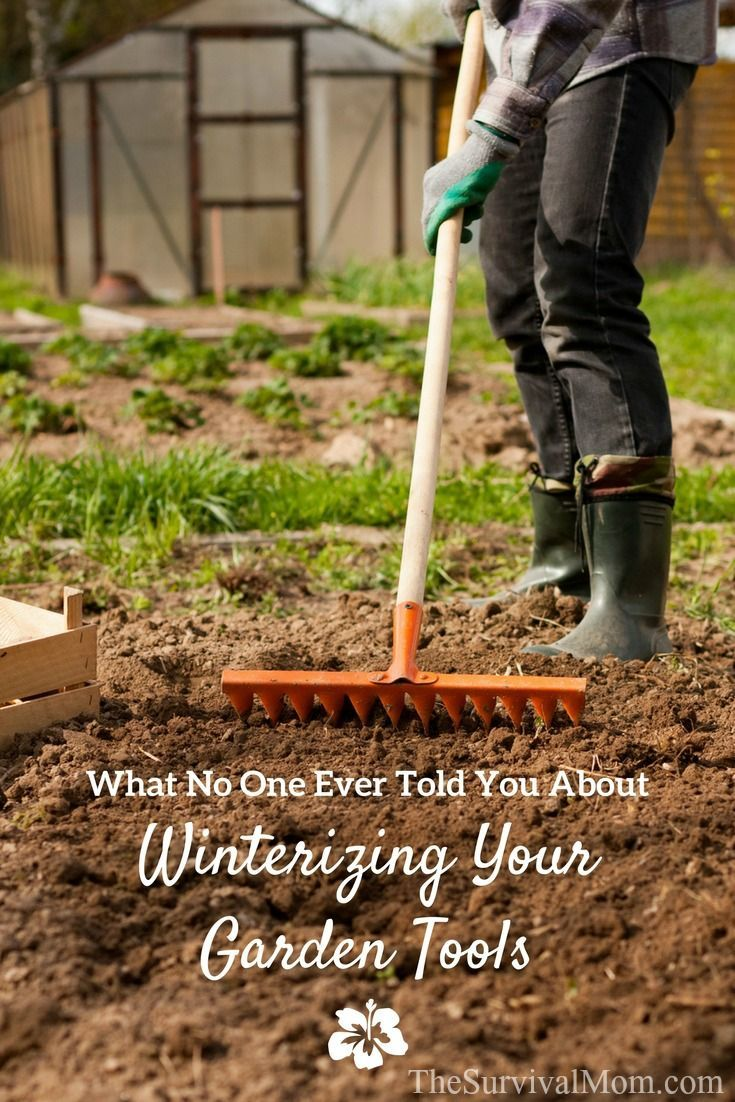 What No One Every Told You About Winterizing Your Garden Tools ...