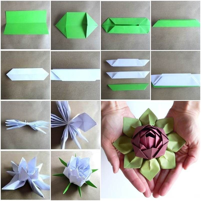 incredible origami lotus flower instructions amp video