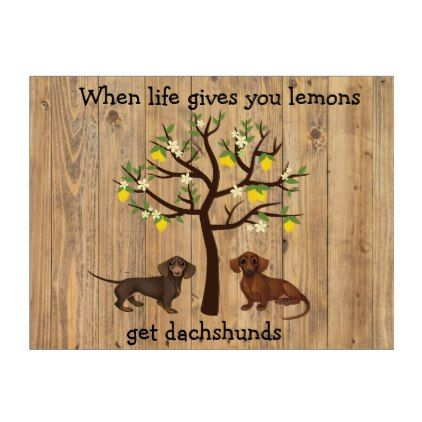 Dachshund yard sign when life gives you lemons dachshunds dog and pup
