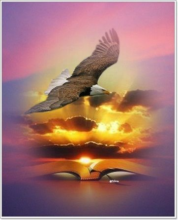 Isaiah 40:31 | Prophetic art, Jesus art, Prophetic art worship