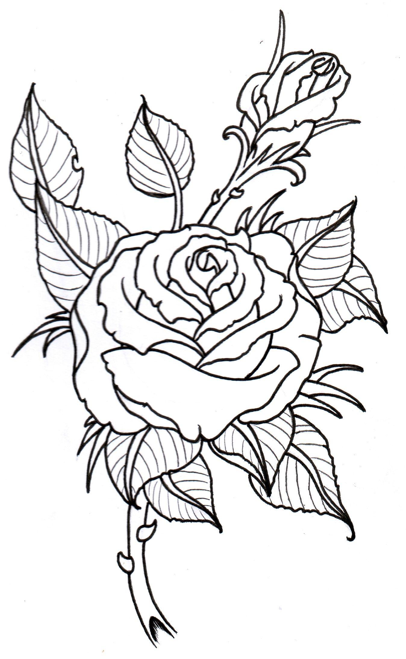 rose_outline_by_vikingtattoo.jpg (1348×2187) | Leathercraft ...