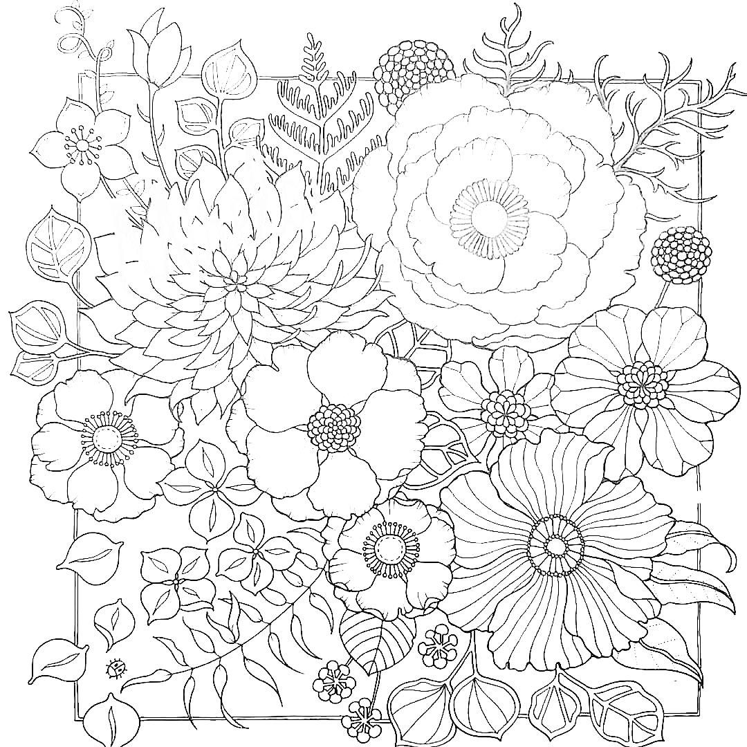 world of flowers  Flower coloring pages, Coloring pages, Cool