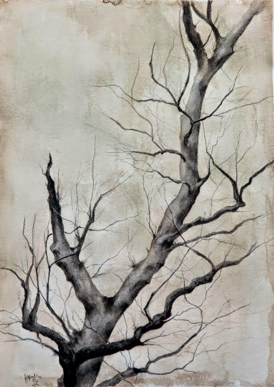 Al Mazzaglia I have a tree Charcoal on paper #draving #illustration #artworks #artist #almazzaglia #tree #fineart #viarco #derwent https://www.facebook.com/almazzaglia.visualartist?ref=hl http://almazzaglia.com