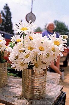 Center Piece Ideas For A Daisy Themed Wedding