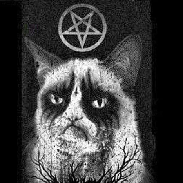 .@xguigowsx   #evilcat #blackmetal #satan