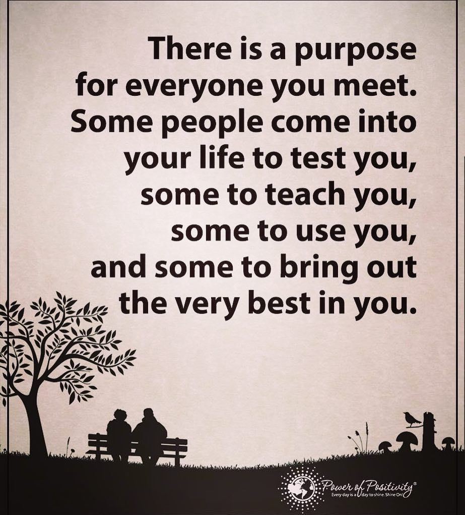 Some Good Quotes On Life There Is A Purpose For Everyone You Meetsome People Come Into
