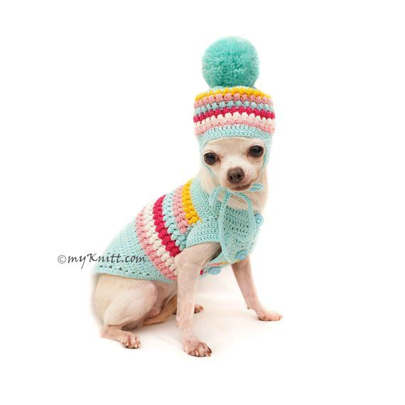 Teal Dog Sweater Crochet, Dog Clothes Crochet combine with Dog Pom ...