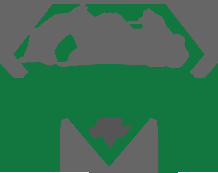 Gem City Catfé Cat lounge, Cat cafe, Cat rescue
