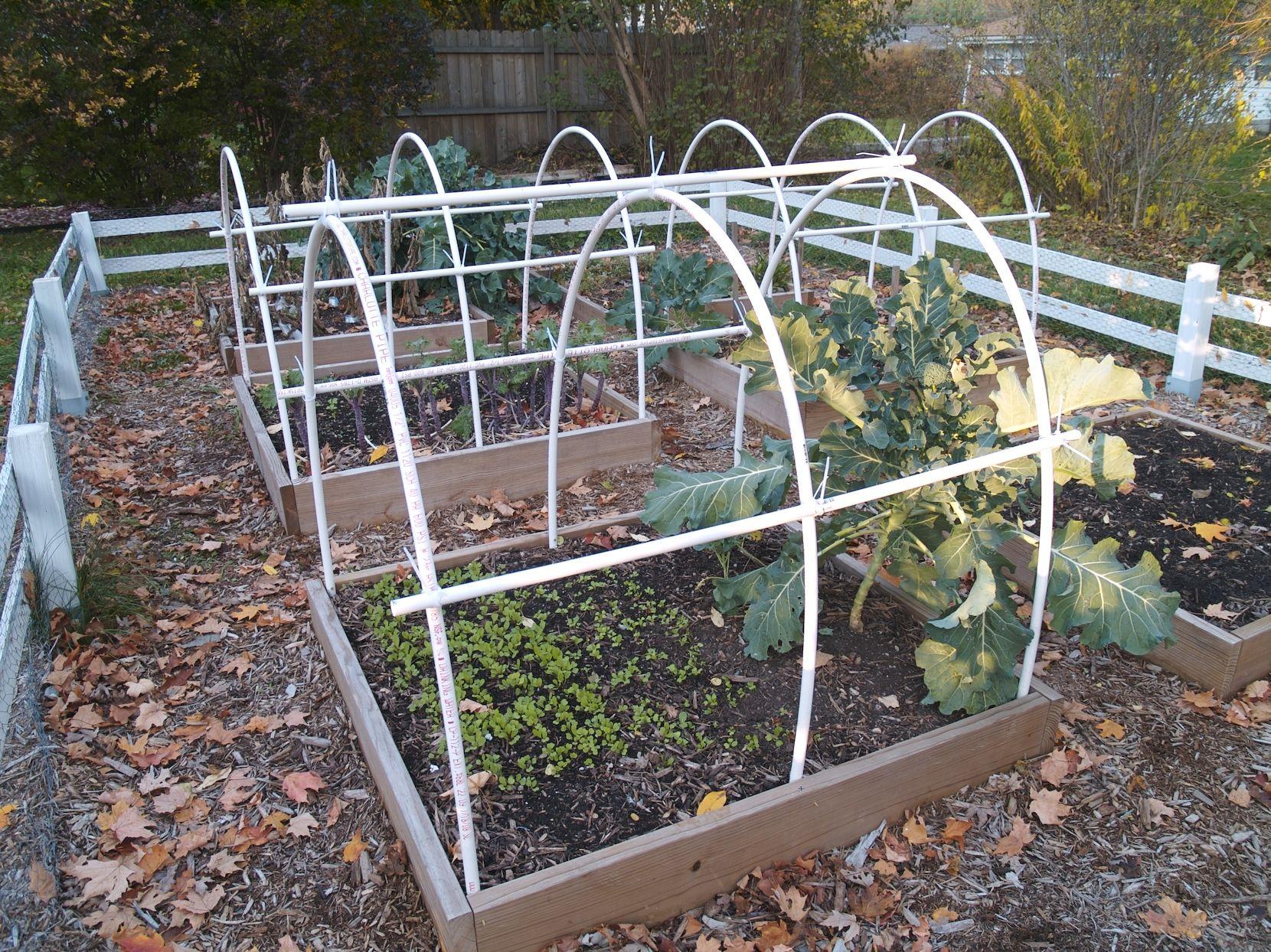 pvc frame greenhouse google search - Pvc Frame Greenhouse Plans