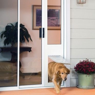 Dog Door For Sliding Door The Thermo Panel Iiie Size Large Freedom