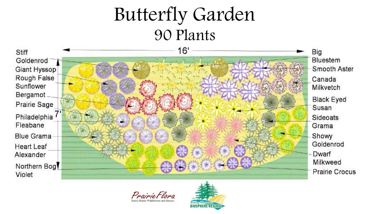 Nice Design Butterfly Garden   Designing A Little Garden Entails Making Use Of  Every Centimetre Of Space, And Using Techniques