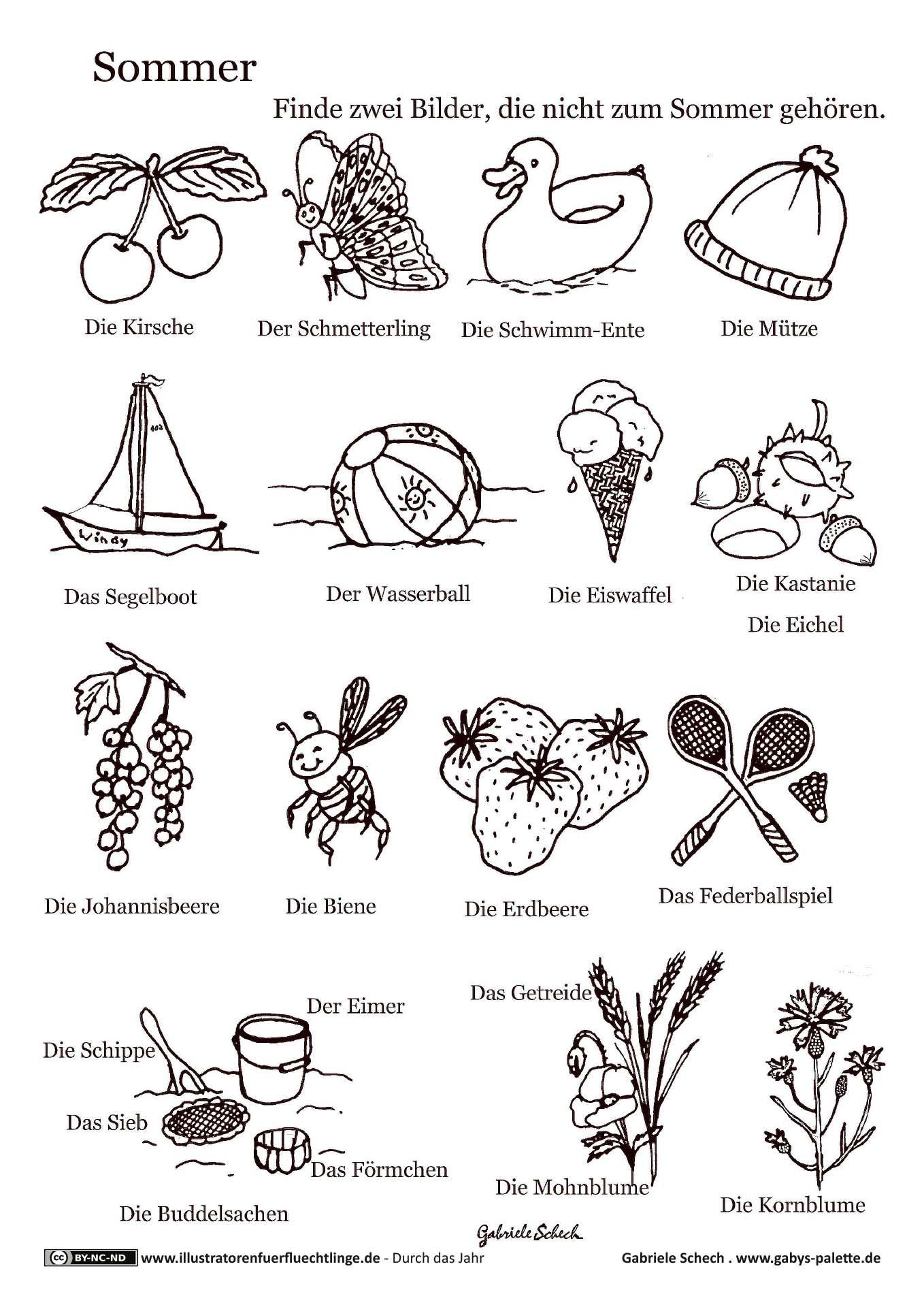 Durch das Jahr- Sommer Rätsel - Schech | kids : preschool ...