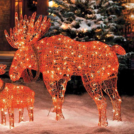 Improvements 42 Lighted Wireframe Moose Christmas Decoration At Hsn Com