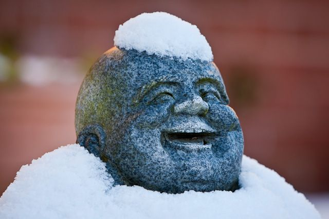 have yourself a merry little snowy buddha!