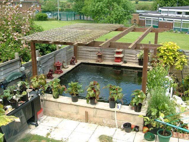 Image result for raised koi pond pergola   Ponds backyard ...