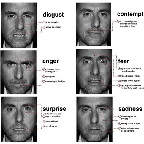 Paul ekman facial expressions