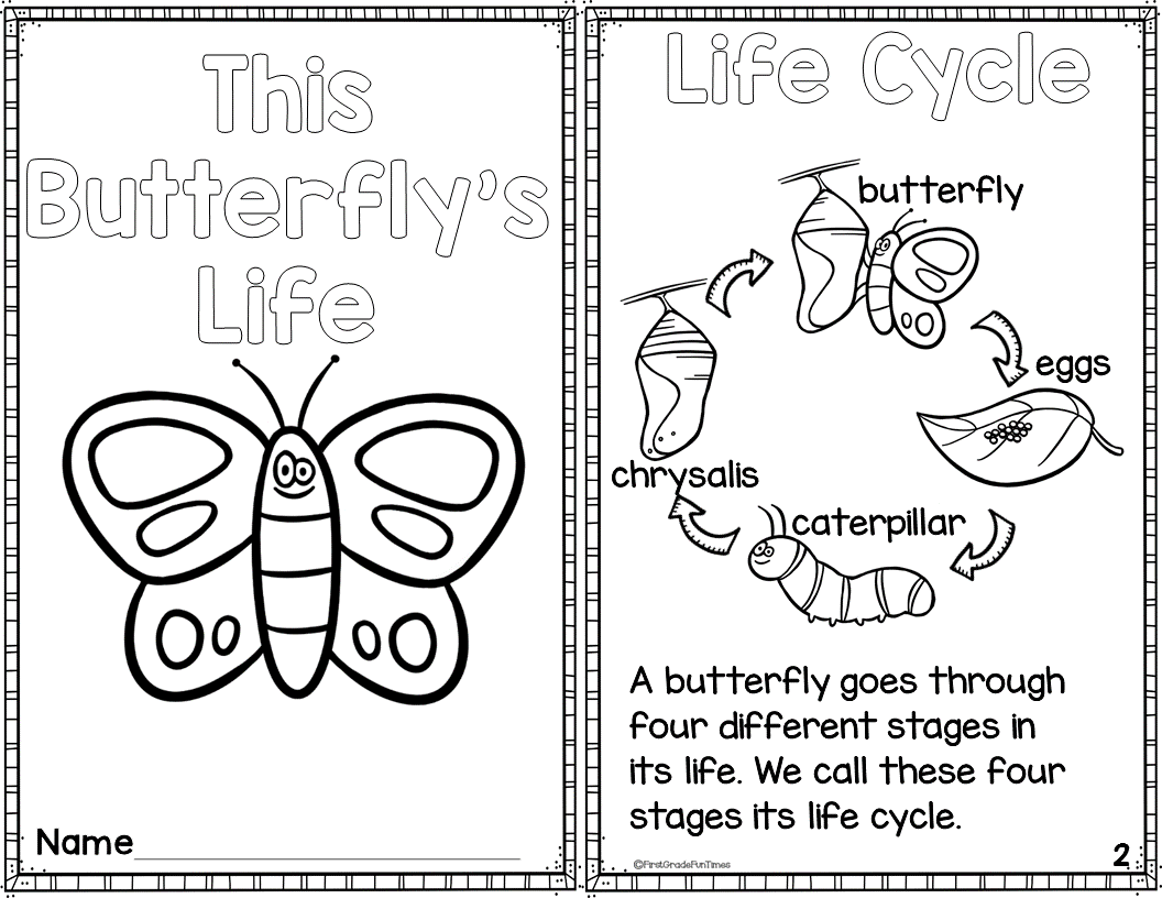 Butterfly Life Cycle Printable Reader With Comprehension