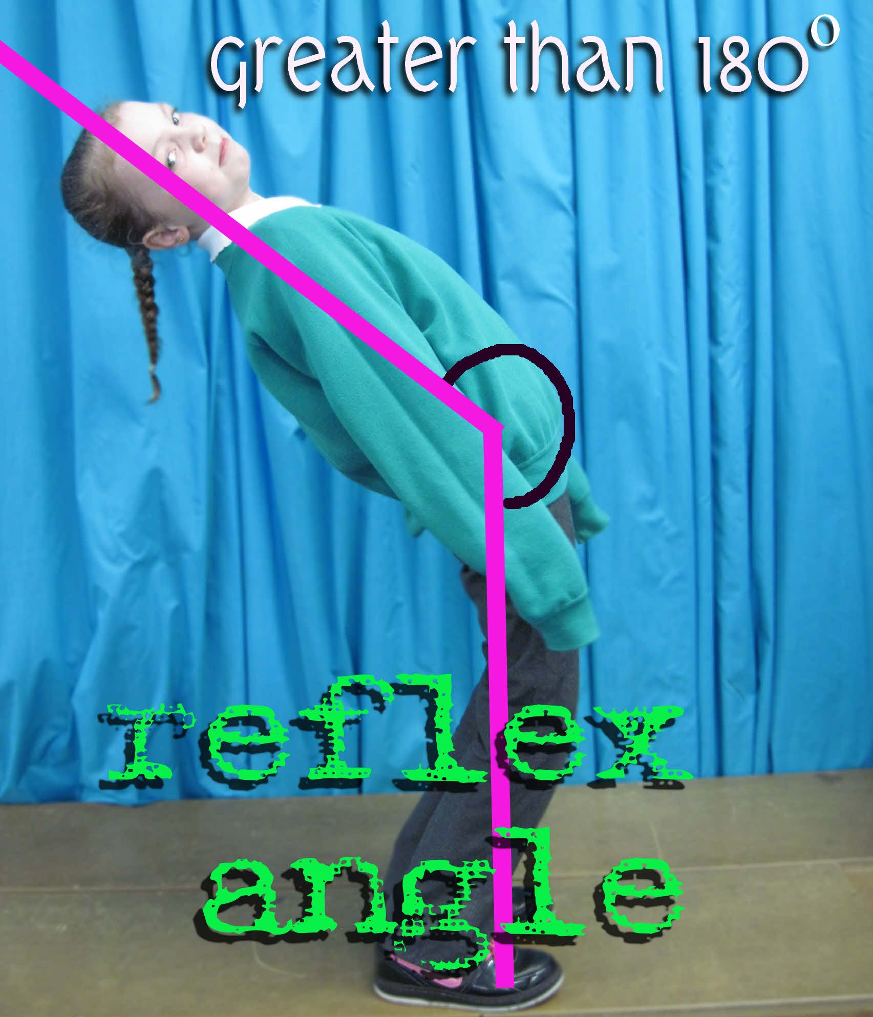 Reflex angles occur along with acute, right and obtuse