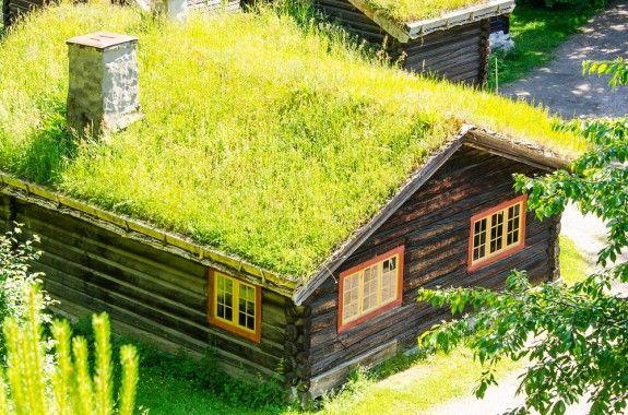 In Norwegen sind die Dächer der Bauernhäuser traditionell begrünt.