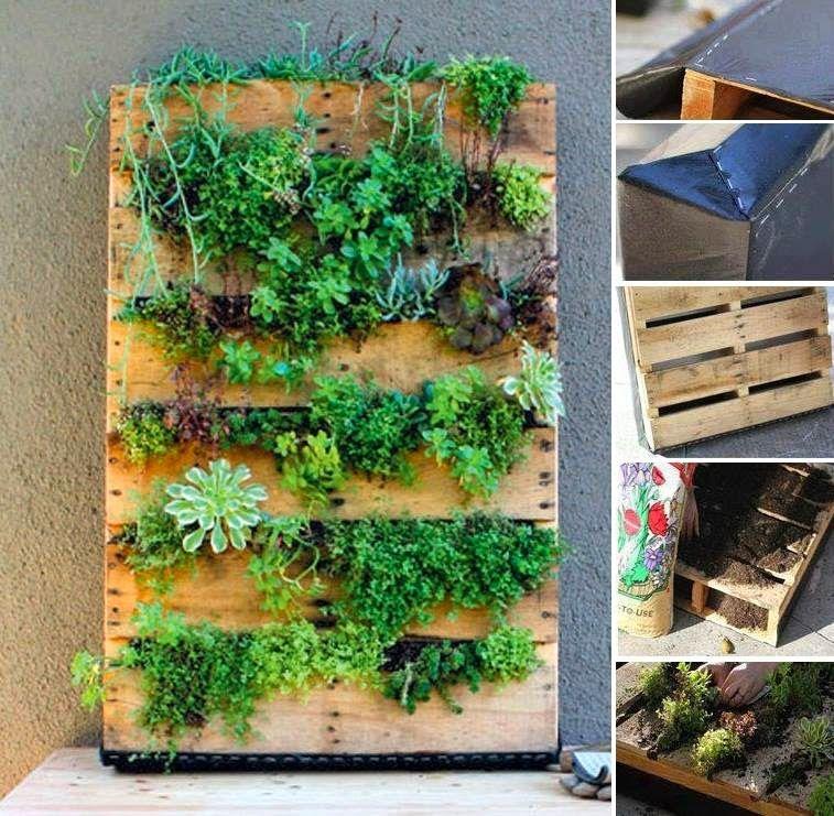 Pin de heleodora ortega en maseteros de madera y rase beds for Jardin vertical reciclado