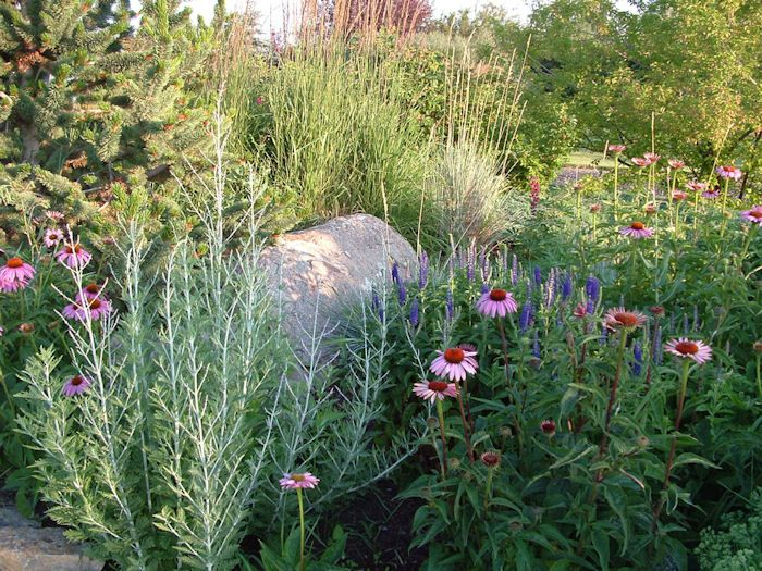 Merveilleux Landscaping Examples | Western Pines Landscaping