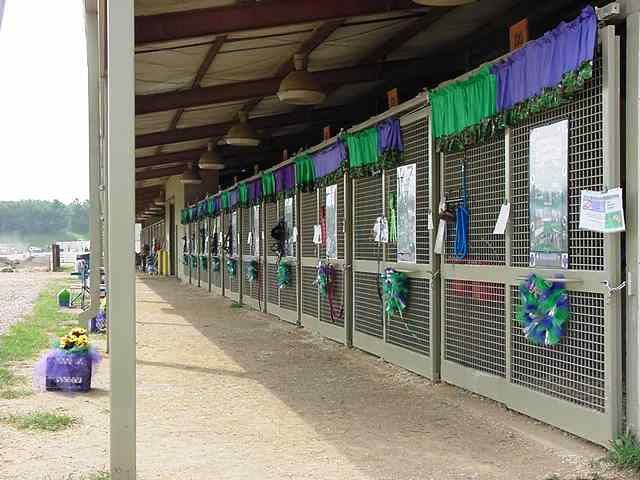 Close Enough Stables Va State 4 H Shows Stall Decorations