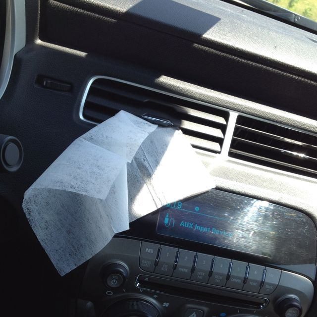 How To Get Dog Smell Out Of Car Vents