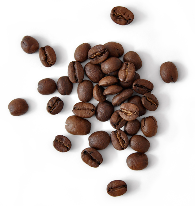 Image Result For Coffee Beans Png