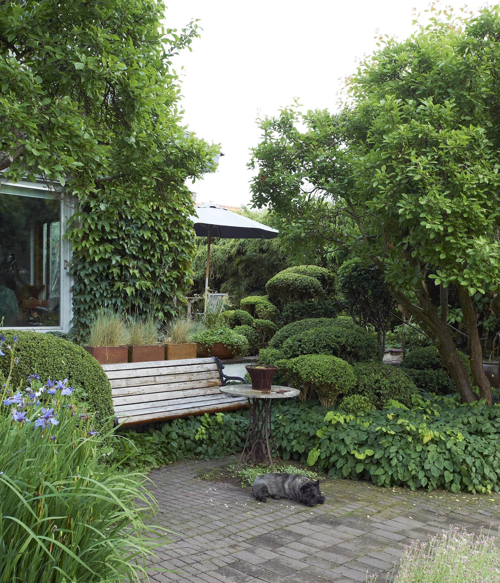 Private Small Garden Design: Hedges And Pots At And By Ulla Molin