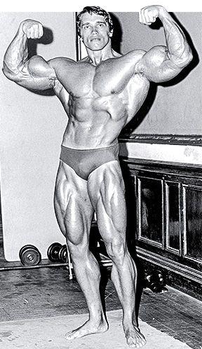 Arnold schwarzenegger blueprint trainer day 10 malvernweather Image collections