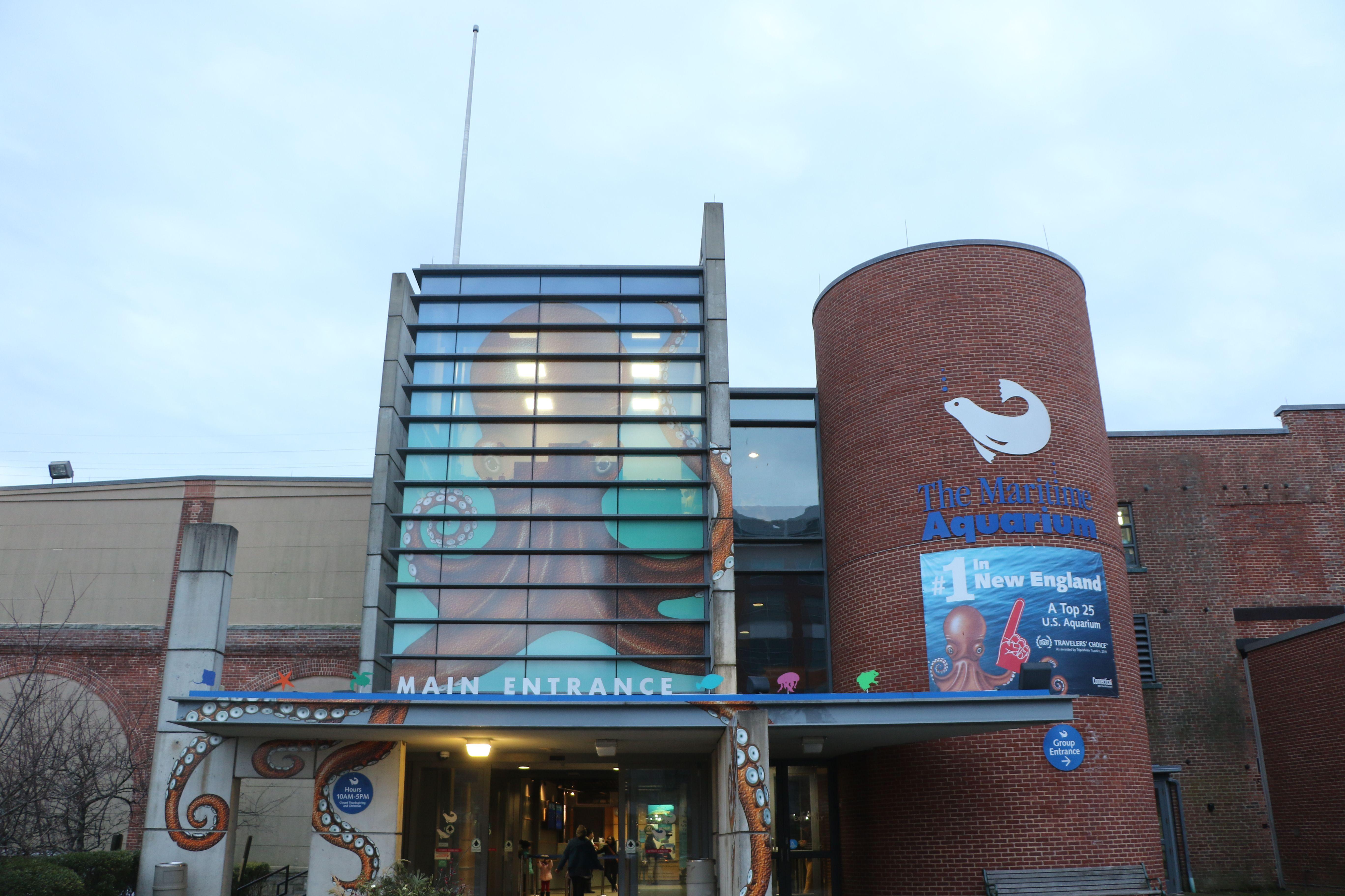 The Maritime Aquarium at Norwalk, CT   Norwalk, Maritime ...
