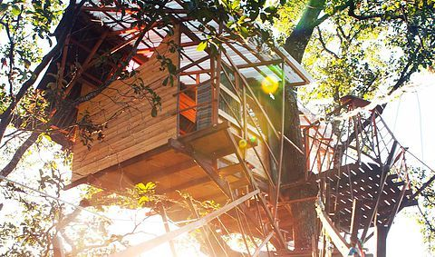 Mariri Jungle Lodge- healing retreat, arts residency & permaculture centre in Alto Paraíso de Goiás, Brazil.