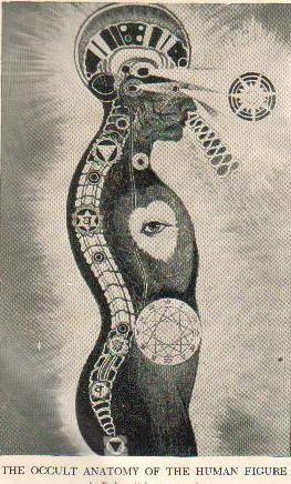 #Occult #Anatomy