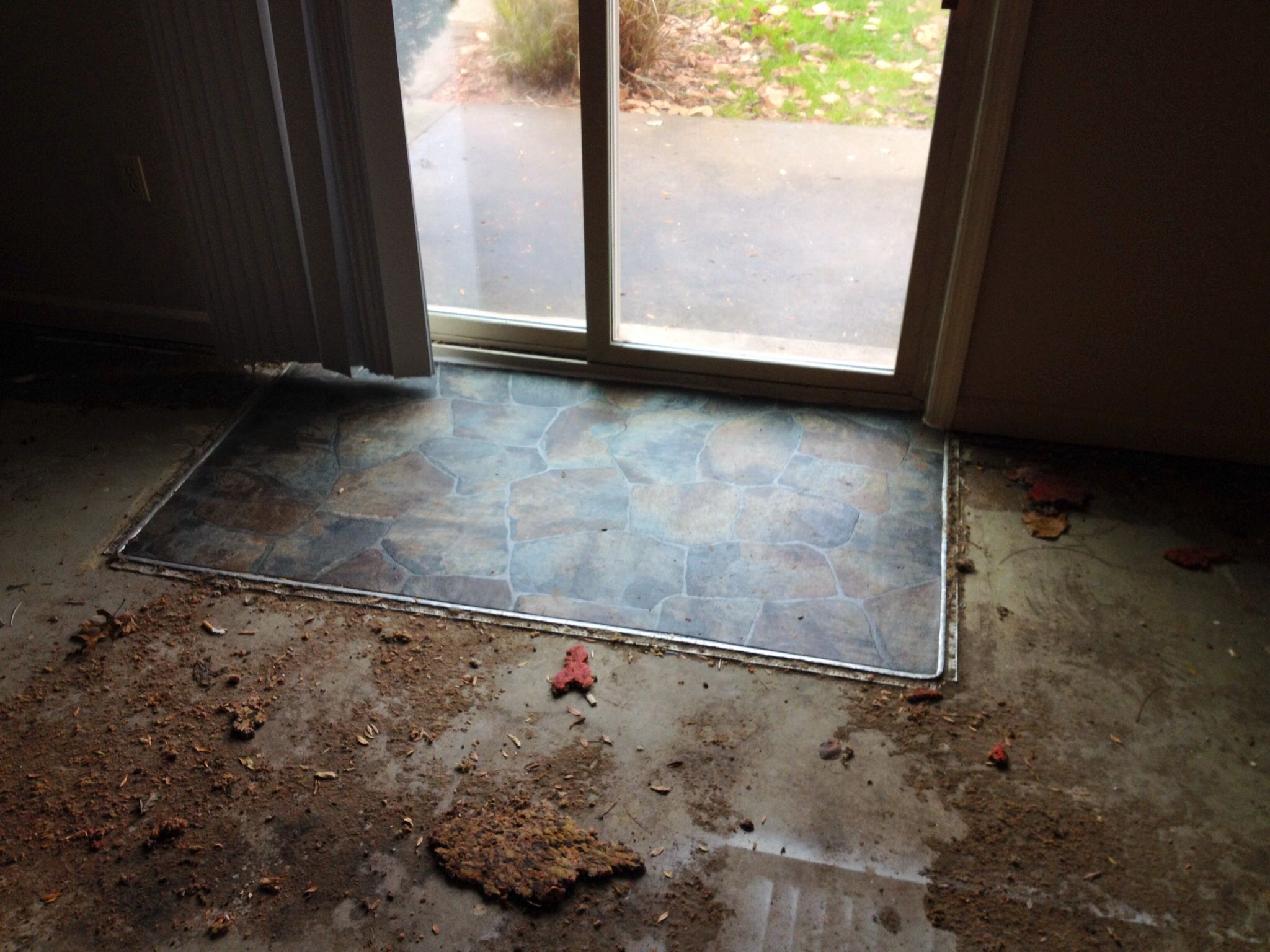 Patio Door Entry Vinyl Flooring...before Carpet Installation.