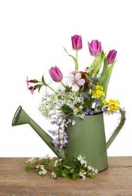 Stock Photo Flores Para Decorar Arreglos Florales